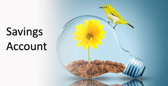 Savings Bank Account